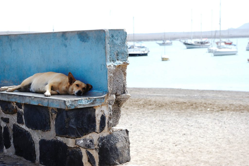Kapverden: Hafen von Palmeira auf der Insel Sal