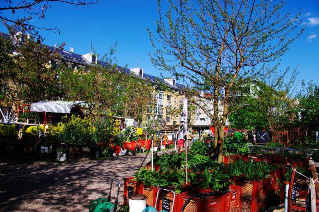 lumorgenstern_bln_prinzessinnengarten6