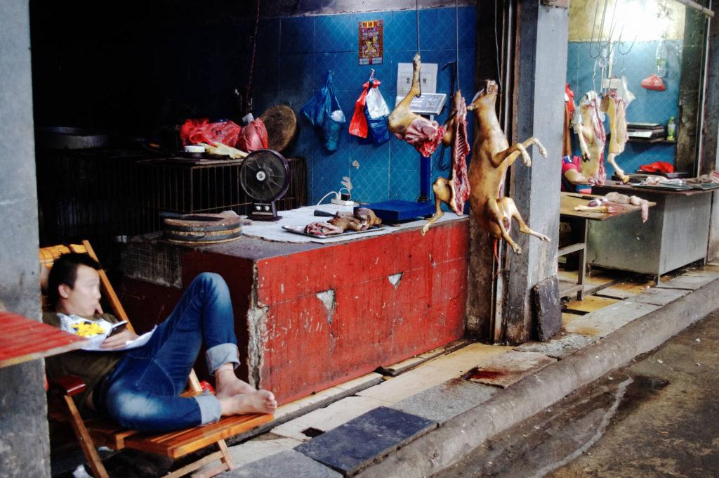 Merkwürdigkeiten aus China - Marktstand mit Hundefleisch