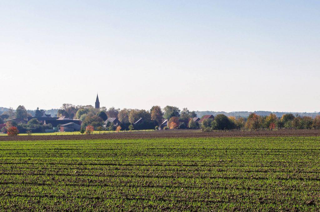 Blick vom Feld auf das Ökodorf Brodowin in Brandenburg