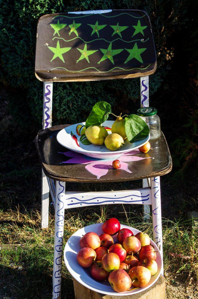 Stuhl mit Quitten und Äpfeln zum Verkauf in Brodowin in Brandenburg