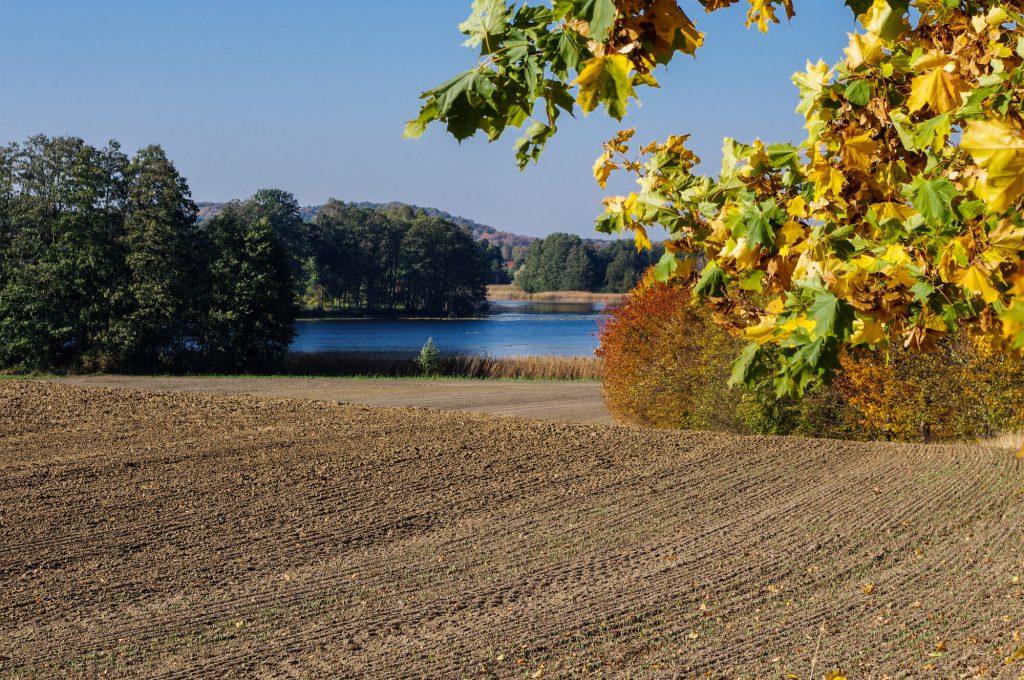 Brodowinsee in Brodowin in Brandenburg