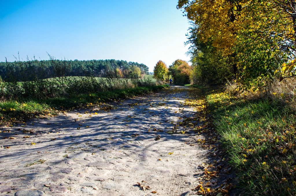 Wanderweg in Brodowin in Brandenburg
