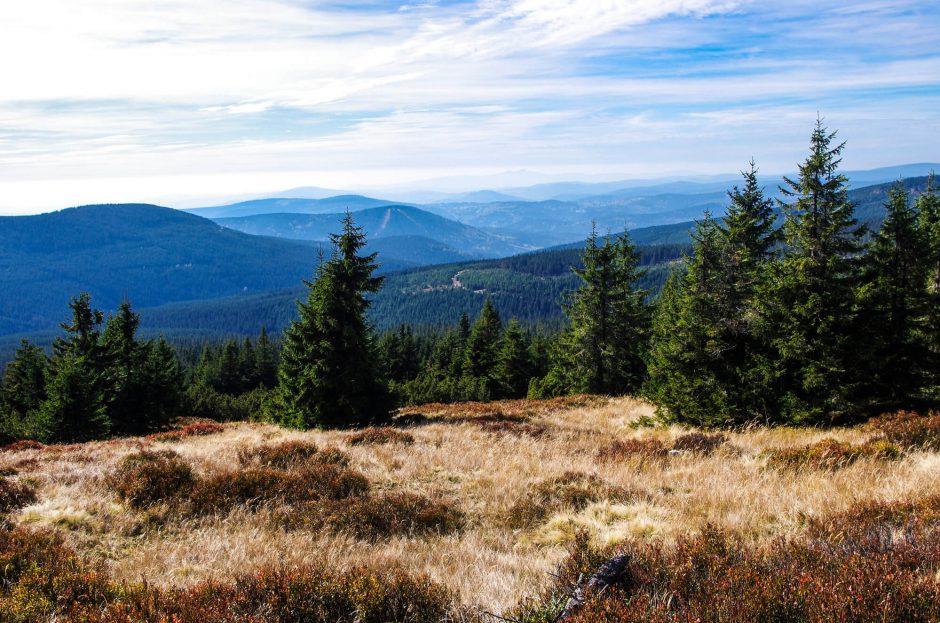 Wandern im Riesengebirge - Wanderweg von der Wossecker Baude Richtung Elbquelle