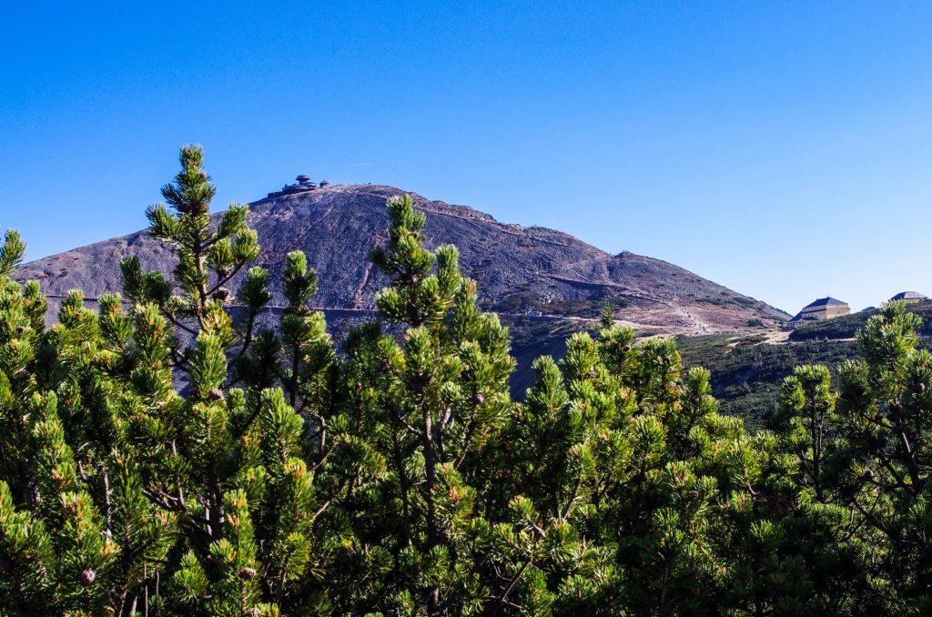Wandern im Riesengebirge: Blick auf die Schneekoppe