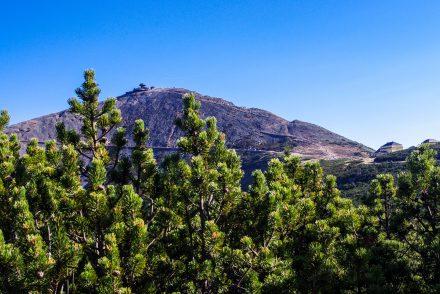 Wandern im Riesengebirge - Blick auf die Schneekoppe