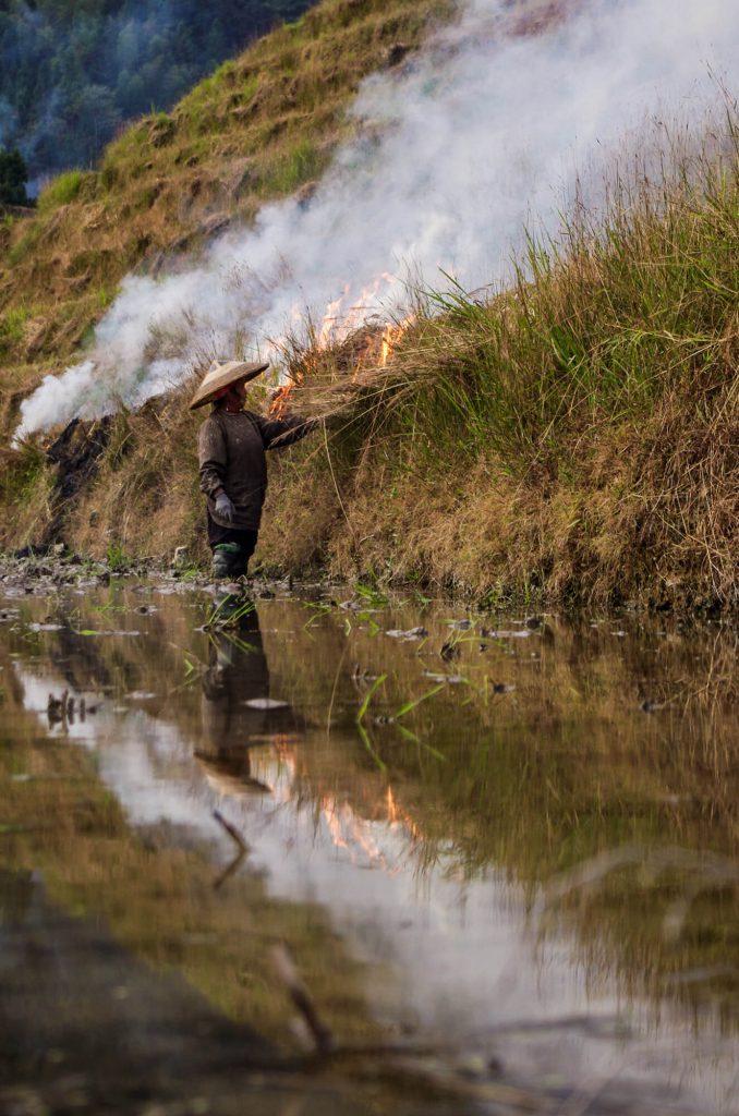 Reisterrassen in Ping'an: Frau brennt Reispflanzen ab