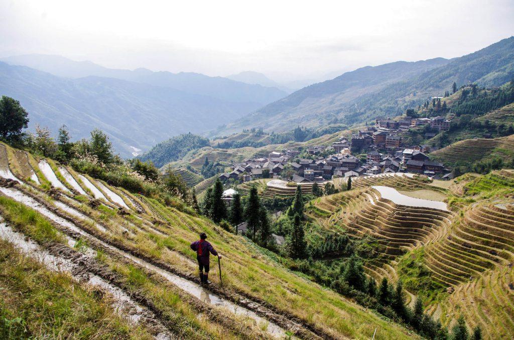 Blick auf die Longsheng Reisterrassen und Ping'an