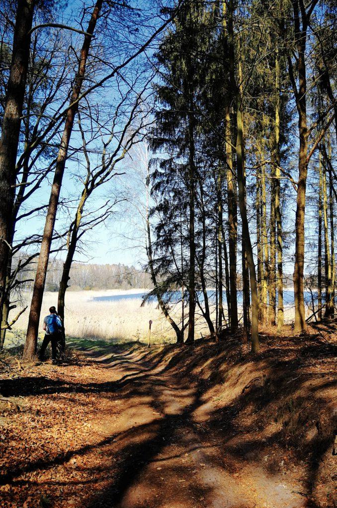 Lehnssee im Naturschutzgebiet Finowtal-Pregnitzfließ
