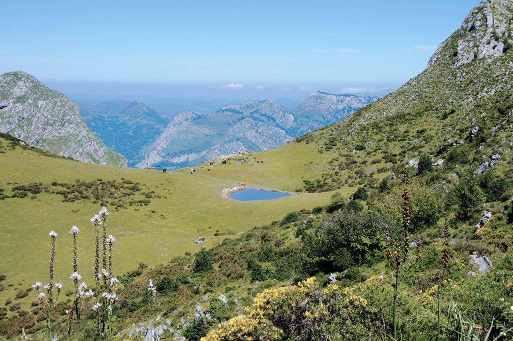 Wanderung zum Gipfel des Pico Pierzu in Asturien