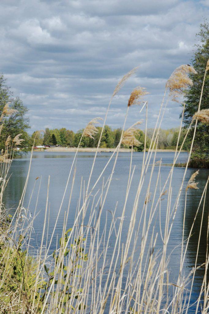 Blick auf die Haven bei einer Wanderung in der Nähe von Zehdenick