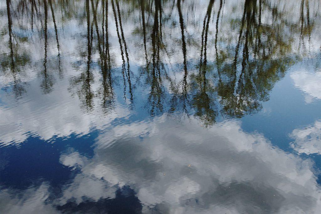 Himmel und Bäume spiegeln sich in der Havel