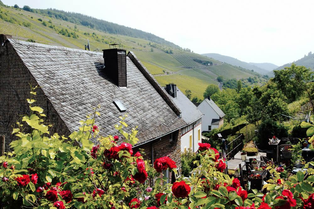 Urlaub an der Mosel: Ausflug nach Enkirch